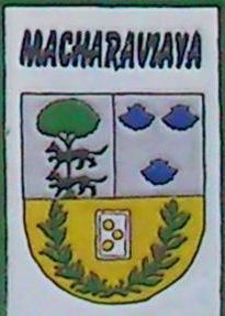 Macharaviaya escudo